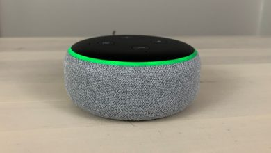 Alexa Green Ring Issue