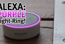 Alexa Purple Ring Issue