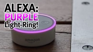 Alexa Purple Ring Issue